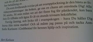 Bert_svamp